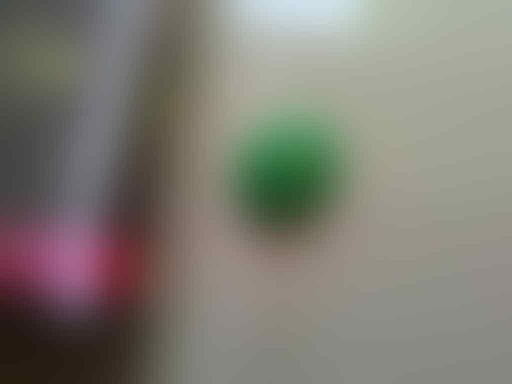 "LELANG BATU if u smell what ""THE ROCK"" is bidding Ep.2-OB 30k-END 1-6-2015 23.00WIB"