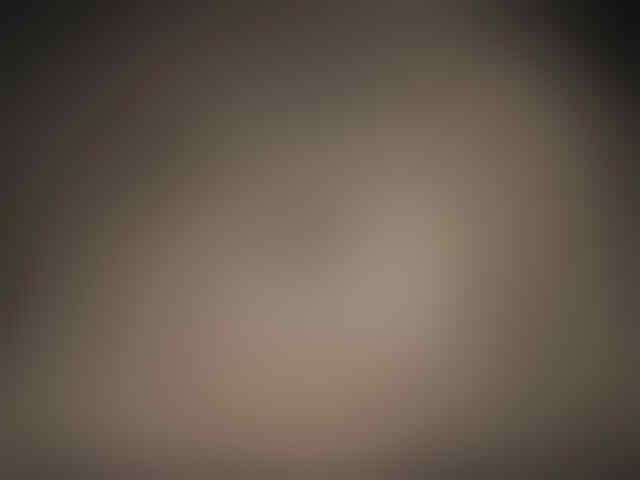Misteri Gua Berdekorasi Cangkang Hewan Laut [PICT]