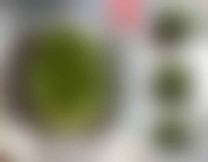 LELANG EDISI KE 72 SUPER HOT ITEM END 13 JUNI JAM 9 MLM BOS
