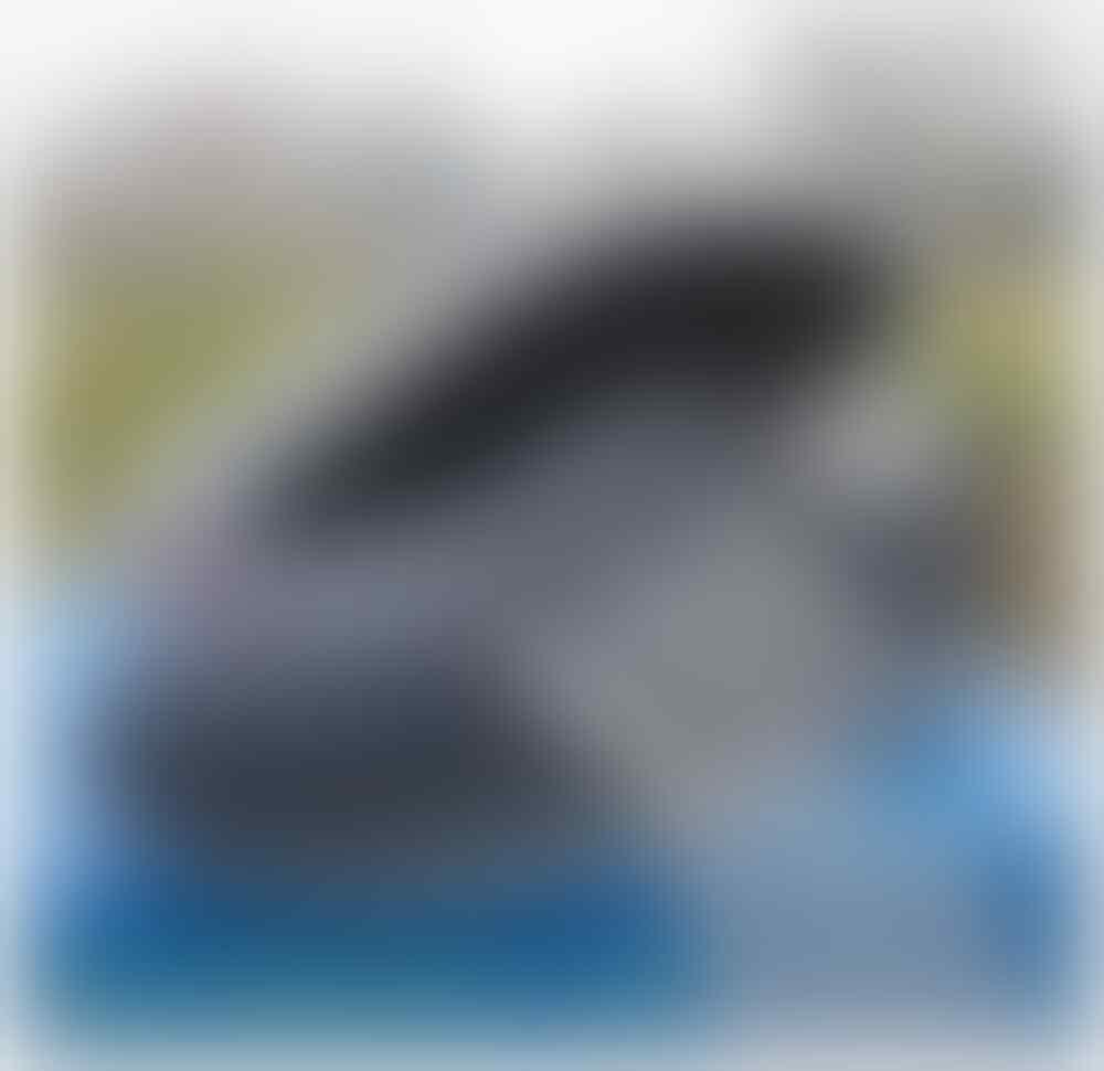 Sepatu adidas Persche Italy dragon vespa samba grade ori vetnam