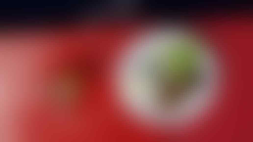 KFR-RBR (Kumpulan Field Report - Regional Bumi Rafflesia)