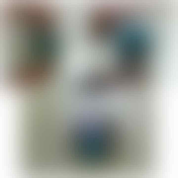 LELANG BACAN DOKO MANTABH TINGGAL PAKE BWT LEBARAN (BS REKBER)