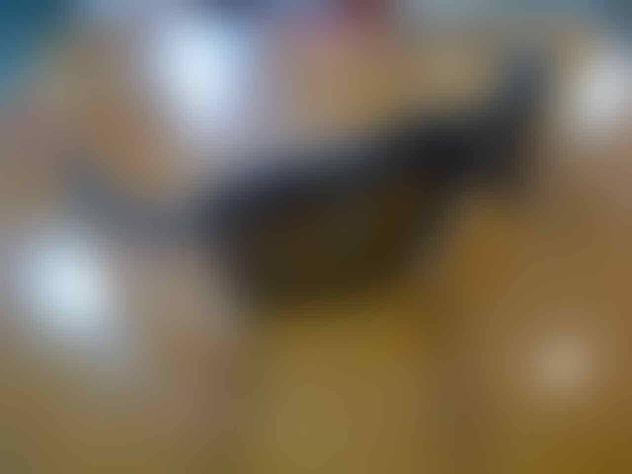3f74bcb281 Terjual Kacamata Oakley Replika Super Premium dll   No TIPU