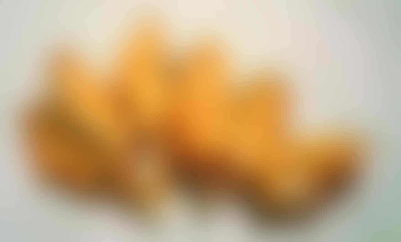 [ASK & SHARE] usaha ikan asap (Jenis ikan Manyung)