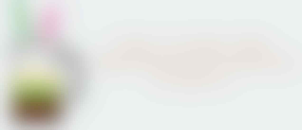 Stick Wired / Kabel Xbox 360 Murah !!
