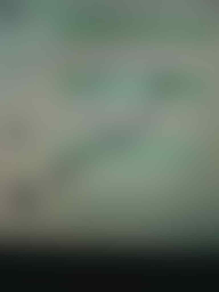 [RIMBUN.OLSHOP] CELANA JEGING WANITA 7/8 UK: XL MURAH MERIAH