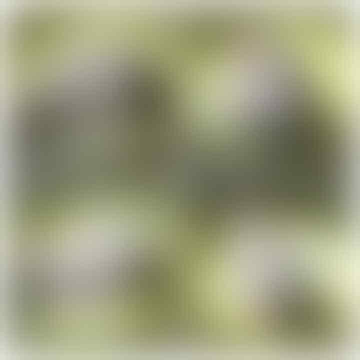 LELANG LAGI AH BOSSS(SULIKI,PANCAWARNA,MOTIF,DLL)CLOSE 9/10 22:00 AUTOCLOSE