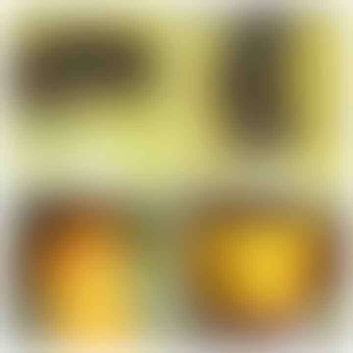 LELANG AKU MAH APA AGANNN( PANCAWARNA,LUMUT,BACAN,DLL) CLOSE 13/10 22:00 AUTOCLOSE