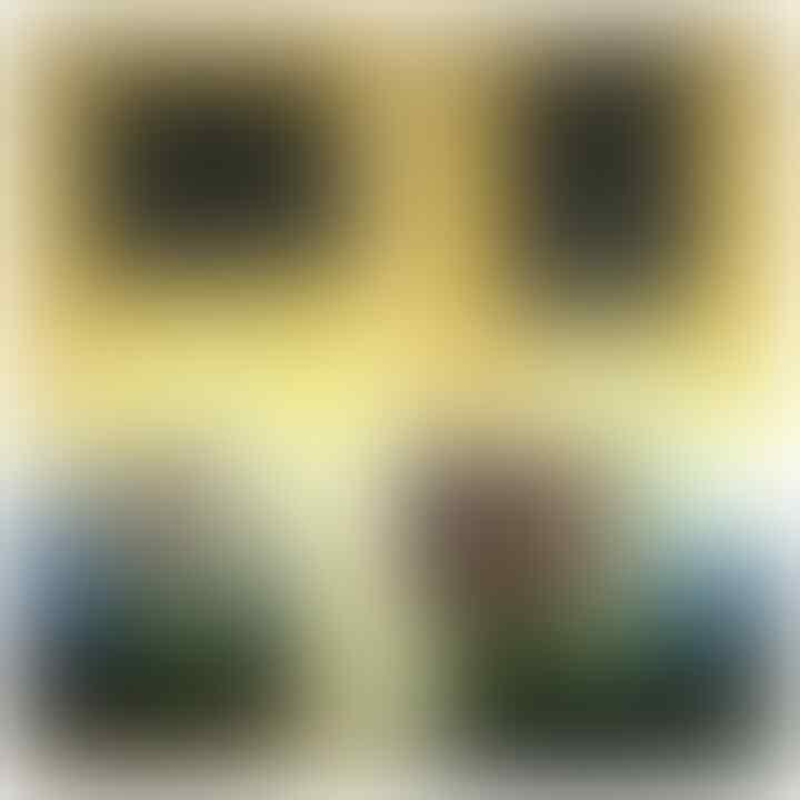 LELANG NGEEEEEEEENG(LABRADOR,BACAN,BULWAK,DLL) CLOSE 16/10 22:00 AUTOCLOSE
