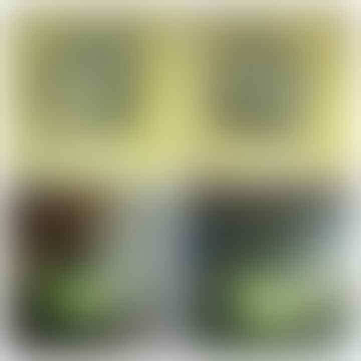 LELANG PANAS MEMBAHANA(SOLOK,LUMUT PAPUA,LABRADOR,DLL) CLOSE 17/10 22:00 AUTOCLOSE
