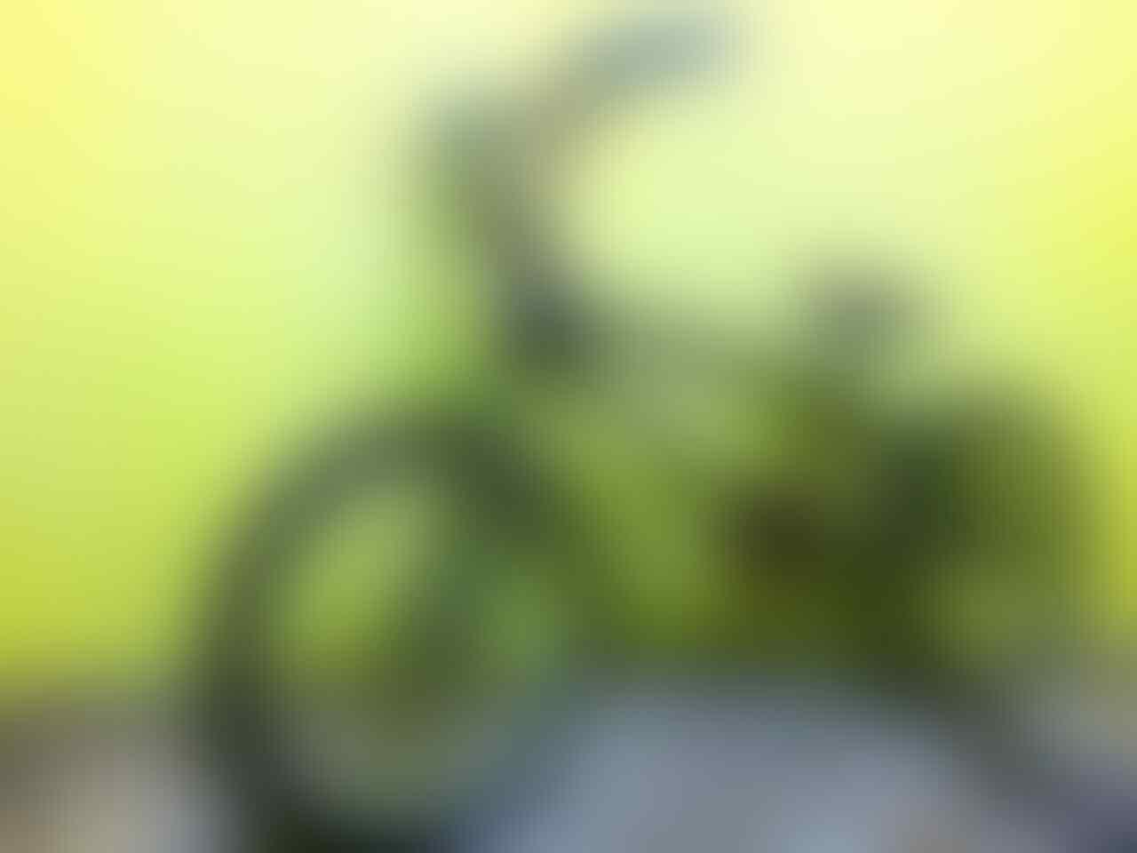 [KOMUNITAS] ۩۞۩• - KASKUS BMX - ۩۞۩•