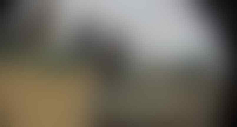 [Mati Sangit] Sniper IS/ISIS Mangsa Puluhan Tentara Kafir Syi'ah Irak di Baghdad