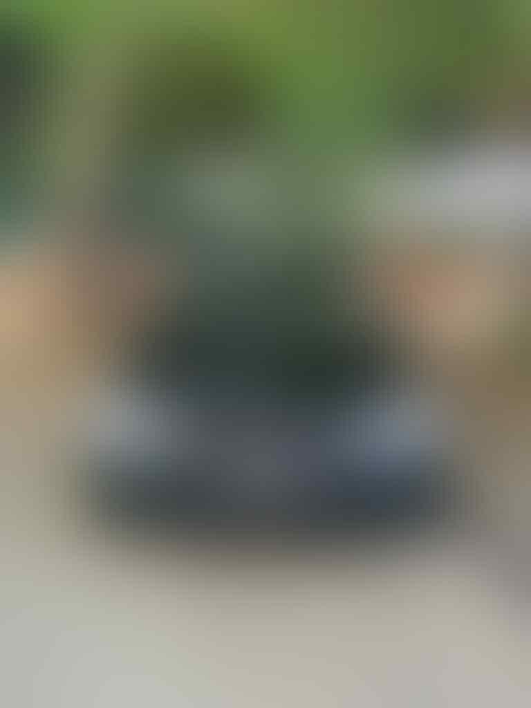 BMW Single Tuner & Modifications