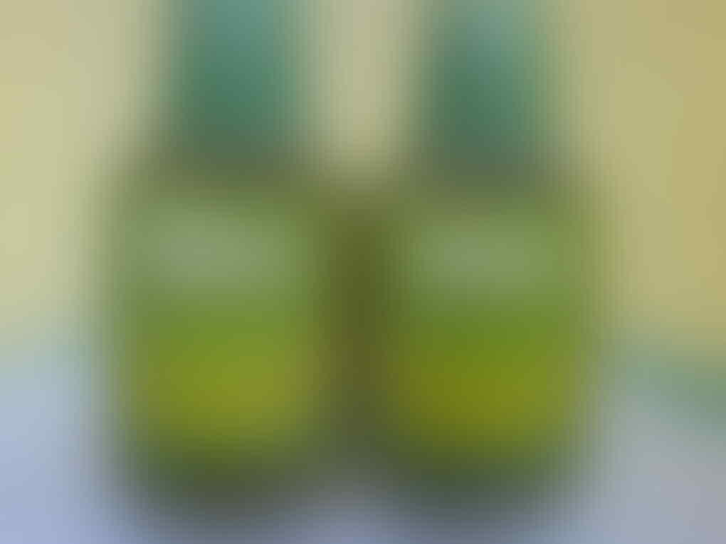 MiGA zaitun plus, minyak zaitun produksi naturaid
