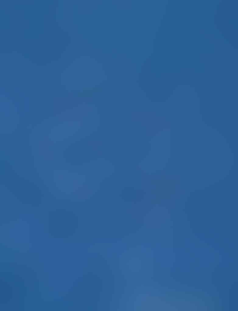 """Aerial Views"" Abadikan Tuna Raksasa (BWK)"