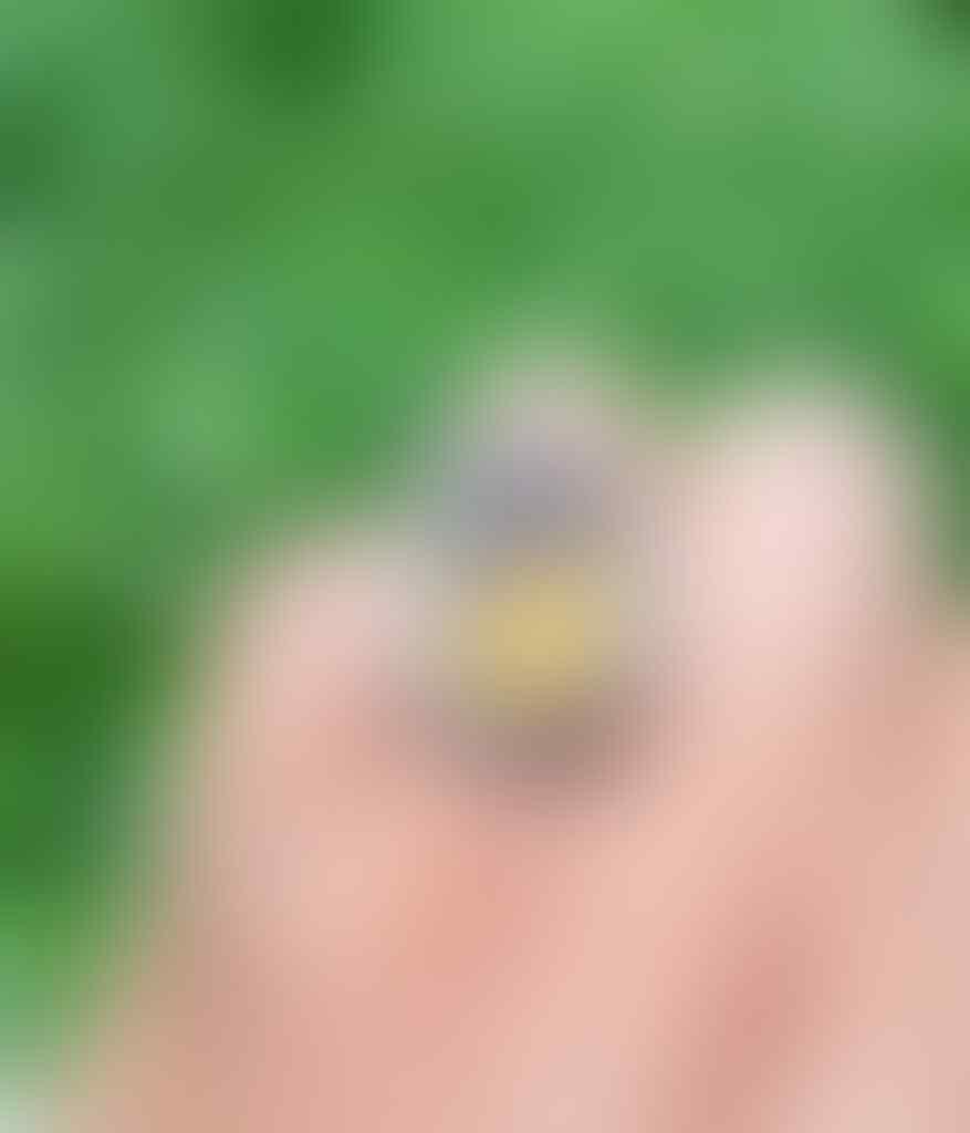 Lelang #7 Yellow Amber full luster bonus bacan sampe besok pagi