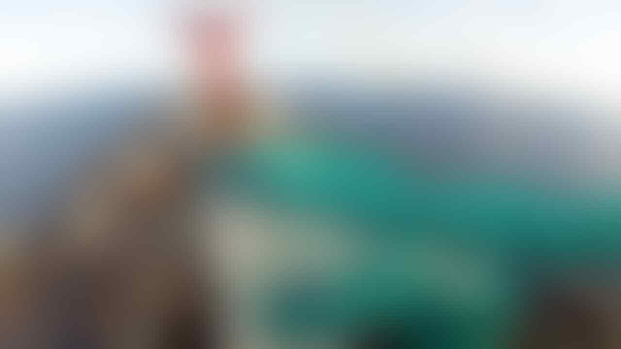 Carnival Cruise Line tes User on June
