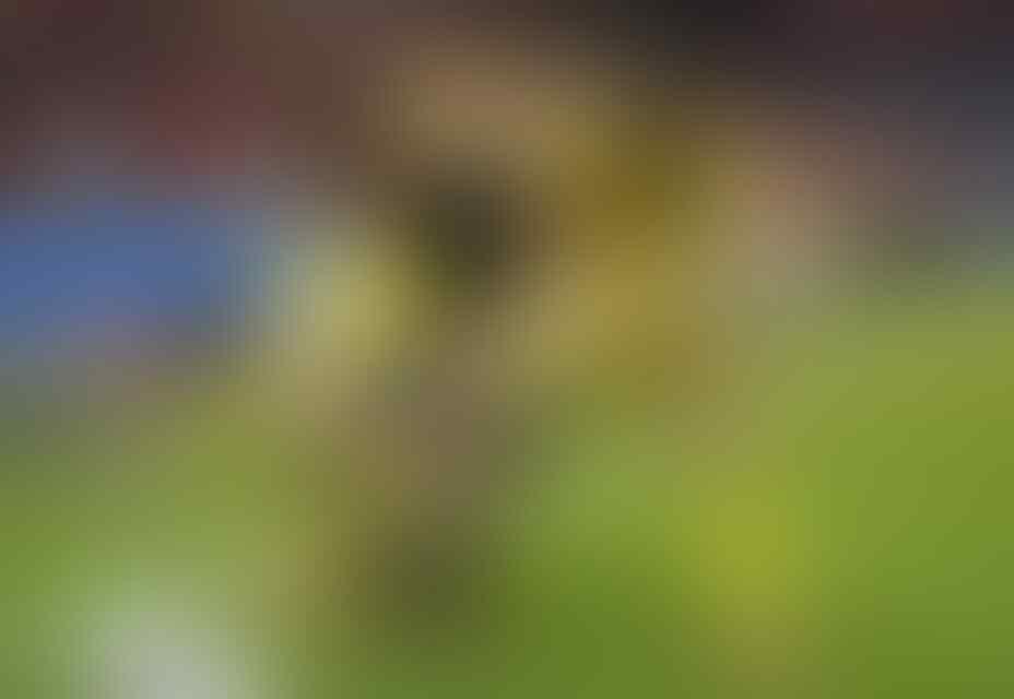 Albania Jaga Asa Lolos ke 16 Besar
