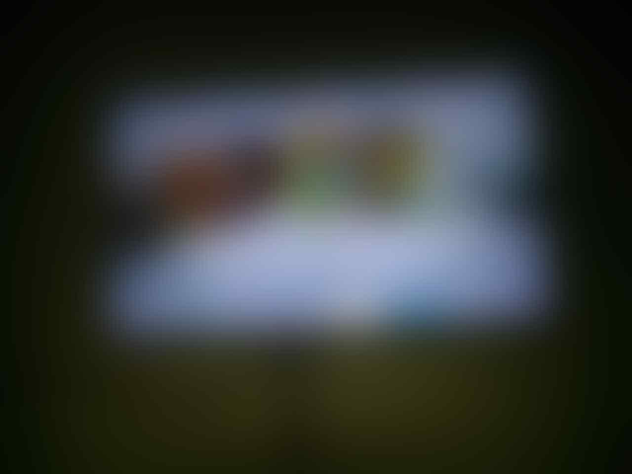 ++ Jasa Hack Softmod Wii/Wii U Loadiine + isi Game via Hardisk di Wii atau Wii U