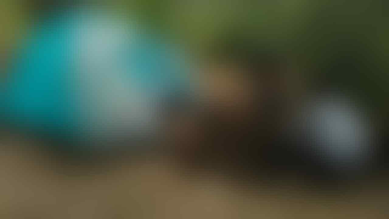 Kisah Horror Pendakian Gunung Merbabu Via Wekas ( Based on Writter Experience )