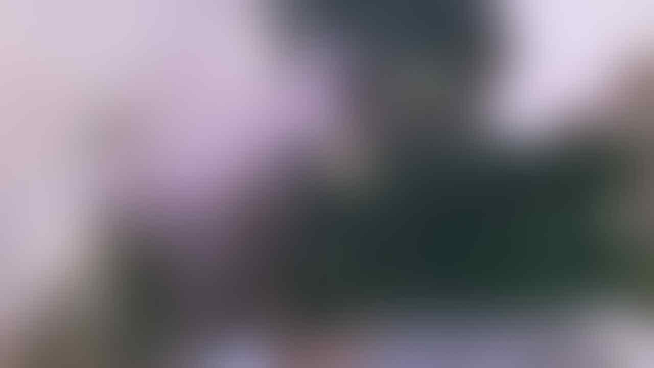 Macbook Pro Retina LCD