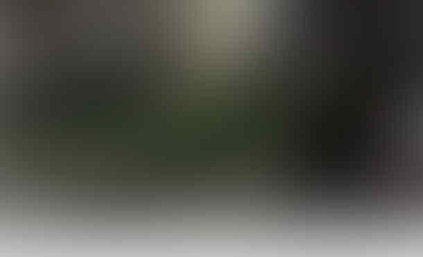 Ini 'Perhitungan Jawa' Ala Nusron yang Menangkan Ahok-Djarot di Pilkada DKI