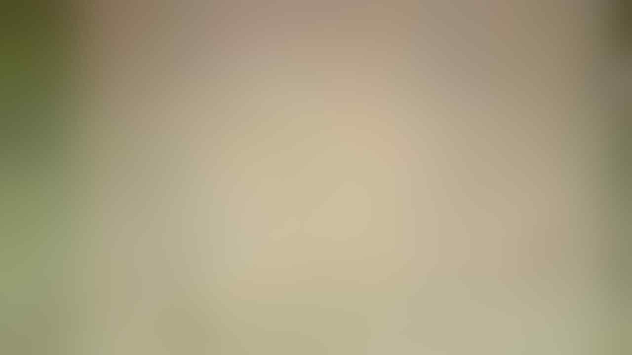 [2nd LOUNGE] Sony XPERIA SP C5302/3/6 [HuaShan]