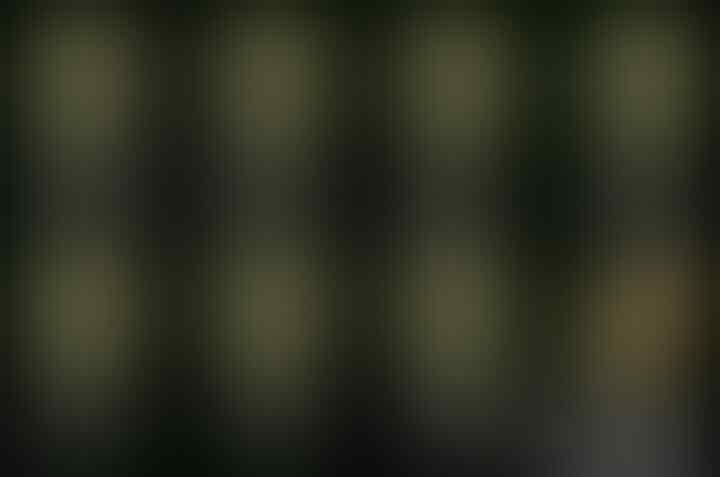 Pesan Jokowi ke Warga: Jangan Mudah Tergoda Isu SARA!