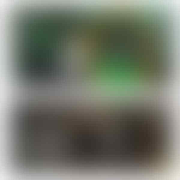 Massa Beratribut HMI Picu Kericuhan Dikecam Netizen