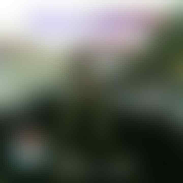 Military Photo Contest: Penjaga Ibu Pertiwi