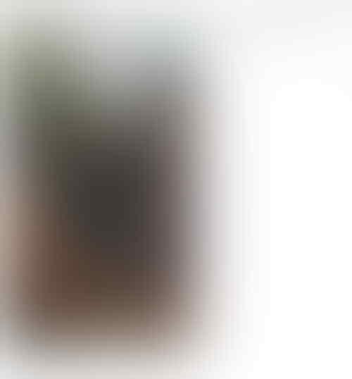 Ahok Ucapkan Selamat Tahun Baru dengan Unggah Video Khusus Ini, Netizen Pun Kagum