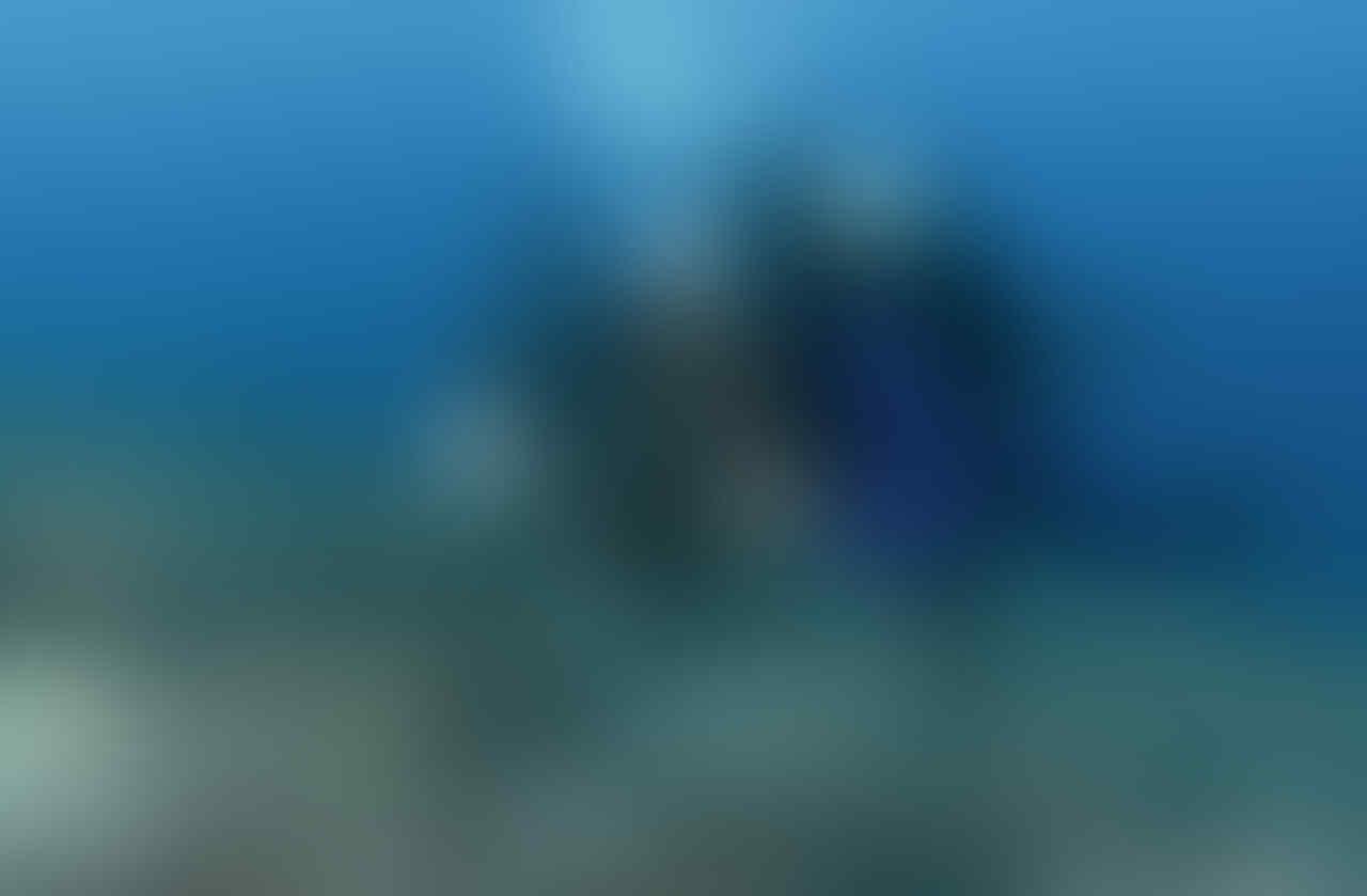 Kamera dalam air (underwater) apa yang harus saya beli?