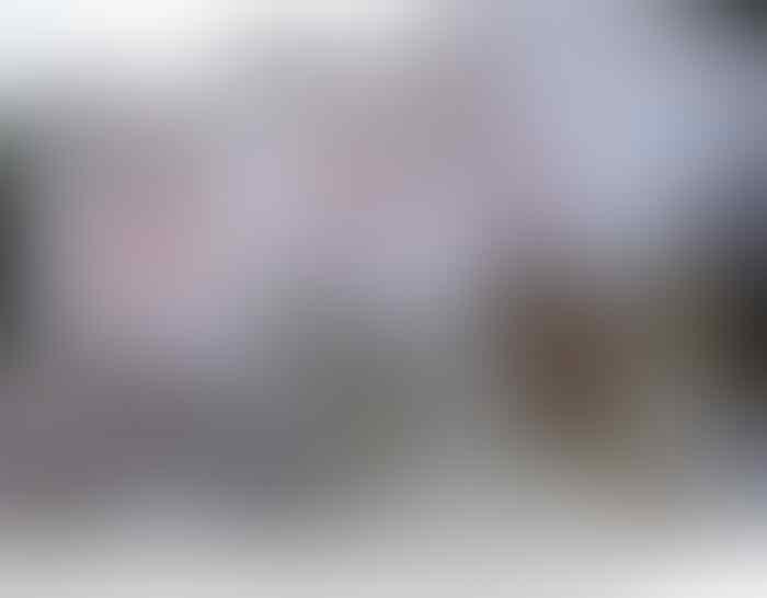 Datang ke Bukit Duri, Ahok Disambut Warga