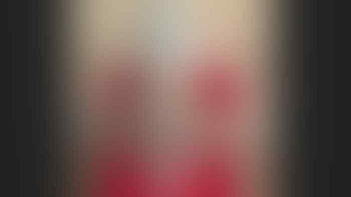Bermula Iseng Posting 'Termos', Ketua Kadin Kepri Resmi Tersangka