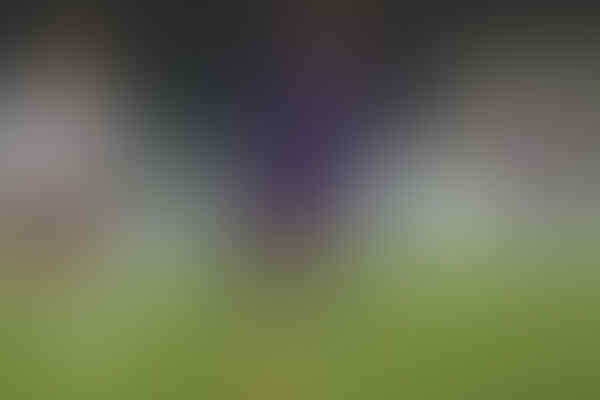 Anak Legenda Italia Masih Akan di Fiorentina