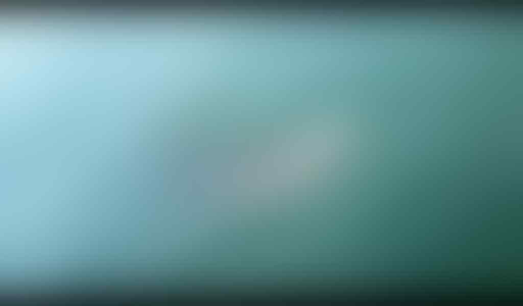Reklamasi diklaim rusak ekosistem laut, Hiu Paus Langka justru muncul didekat pulau H