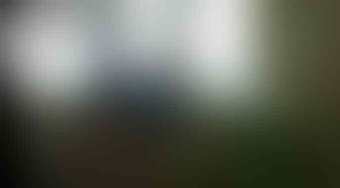 Kisah-Kisah Misterius Hutan Blora