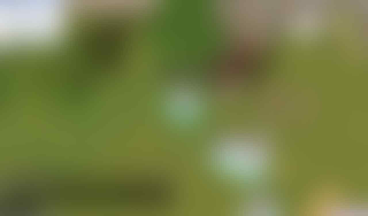 "[PuumaTech] JASA Joki RAGNAROK Indonesia Gravindo | ""TRUSTED SELLER"""