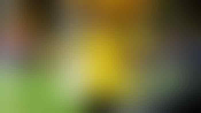 Dortmund Tidak Diperkuat Marco Reus Saat Menjamu AS Monaco