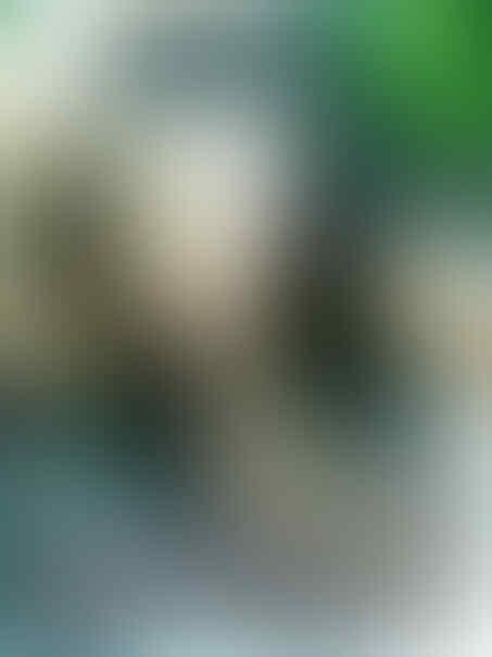 Unggah Foto Bugil, Nikita Mirzani Masih Cari Sensasi