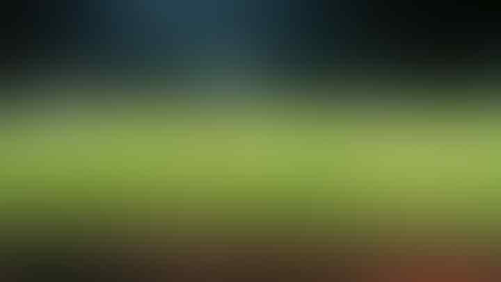 5 Stadion di Indonesia Dengan Kualitas Rumput Terbaik