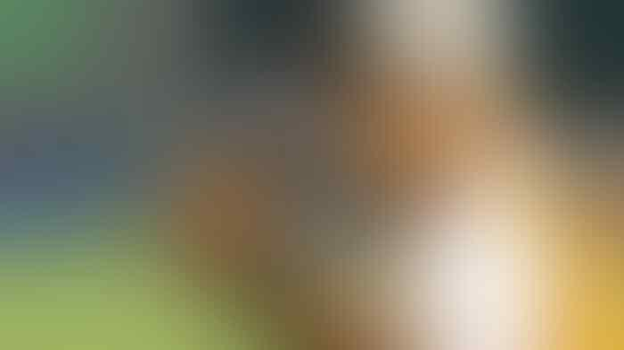 Rahmad Darmawan Beda Pandangan dengan Ketum PSSI Soal Pemain yang Hijrah ke Malaysia