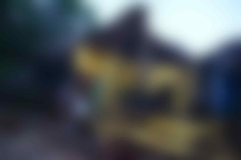 BMKG: Ada 19 Kali Gempa Susulan Yang Mengguncang Wilayah Selatan Jawa