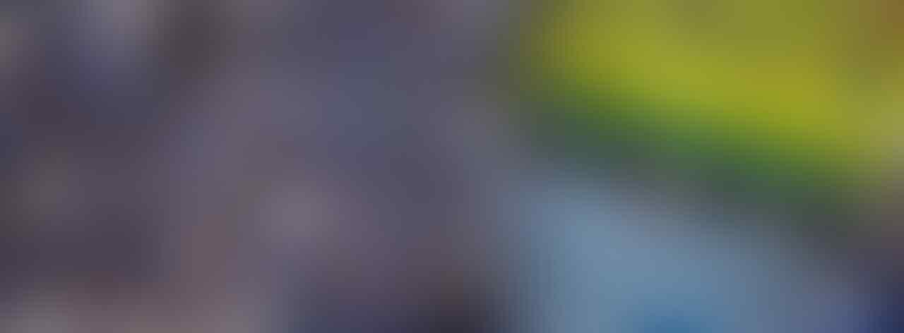 5 Suporter Sepak Bola Indonesia Terbaik, Terfanatik dan Kreatif