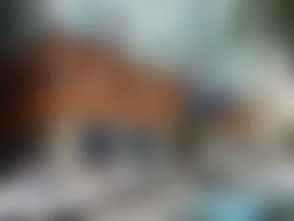Lihat Melly Goeslaw Berpose dengan Bocah Palestina, Netizen Ikut Rasakan Kesedihan