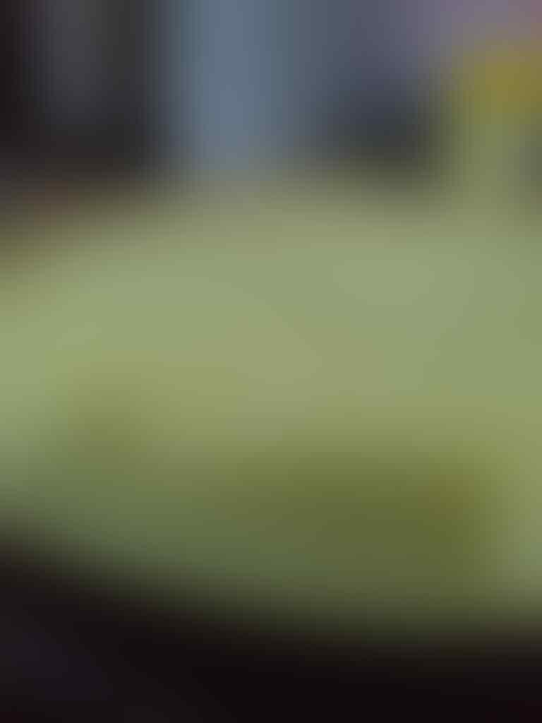 Kumpul Hok Lo Pan / Kue Terang Bulan Enthusiast