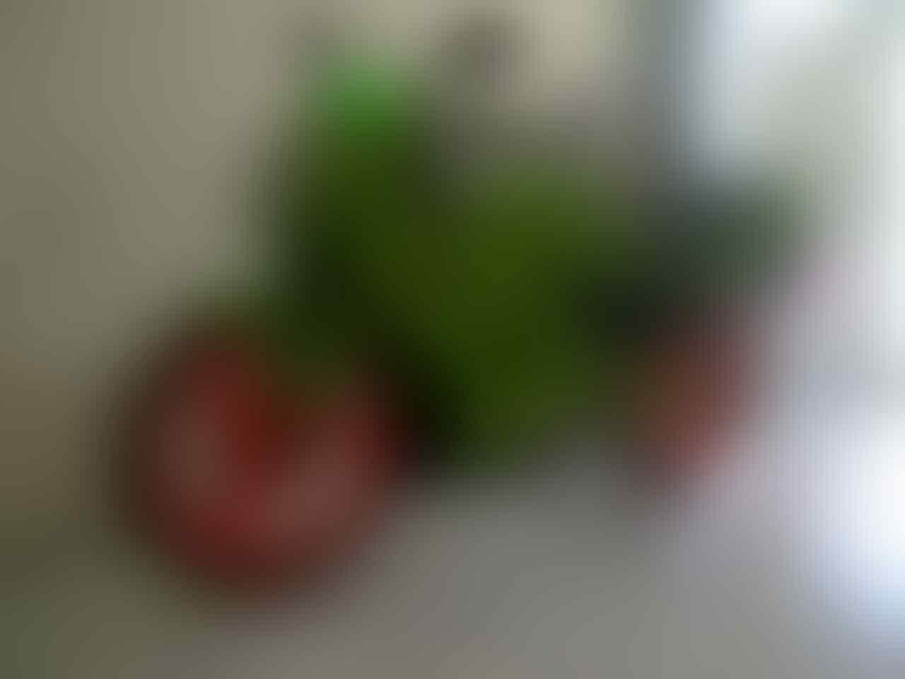 [NKAH]-[Share Info] Serba-Serbi Kawasaki Ninja 150 Versi 25 - Part 6