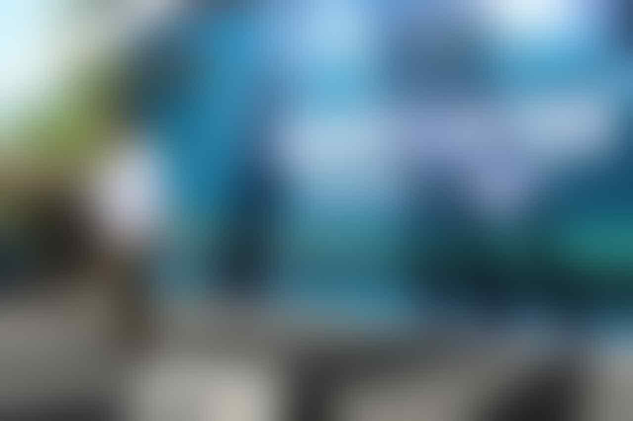 Festival Underwater di Banyuwangi, Mengenal Lebih Dekat Manfaat Konservasi Kelautan