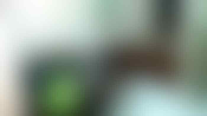 SPG cantik Pengendara BMW yang Tabrak Ojek Online Minta Damai