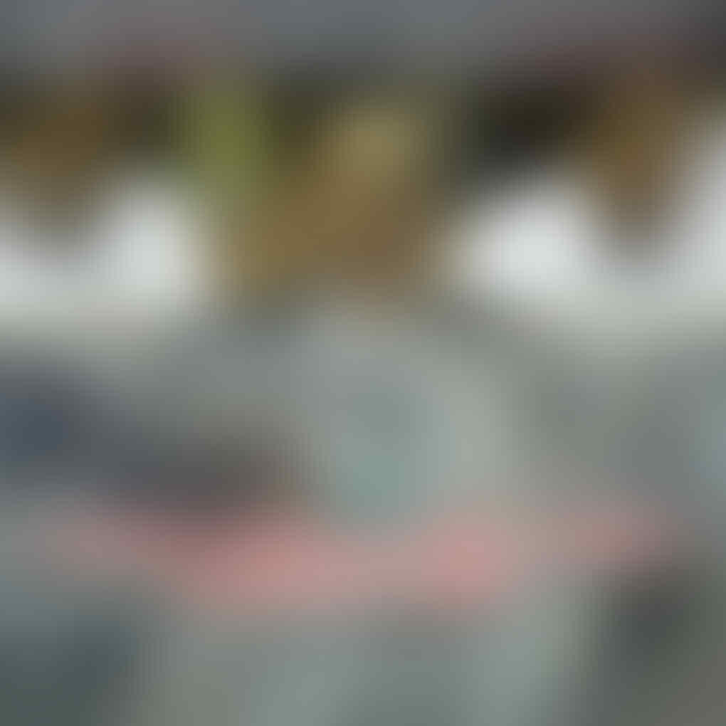 Surat Sudirman Said Menambah Ruwet Polemik Freeport